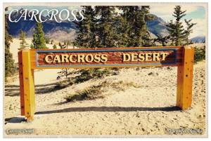 carcross-post-cards19