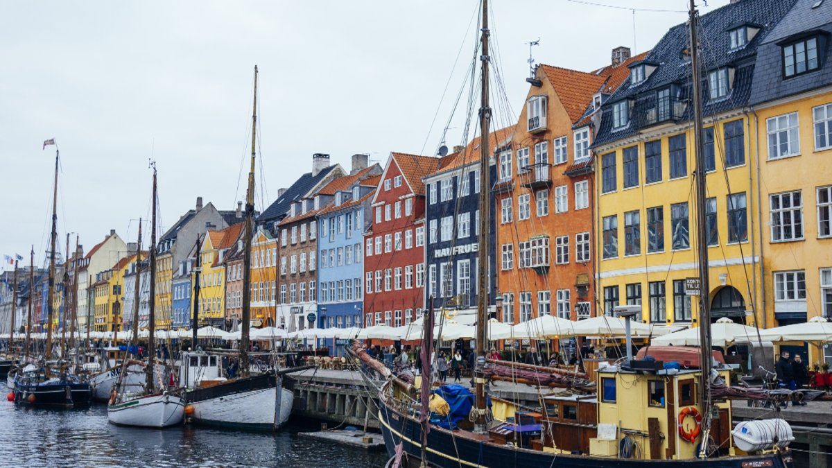 She said her targets were a school west of Copenhagen and a Jewish school in the capital.