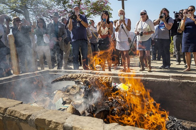 Officials burned the items with an estimated black market value of $1 million in a symbolic gesture to show the United States is committed to ending illegal wildlife trafficking. The U.S. Fish and Wildlife Service partnered with the zoo and California Department of Fish and Wildlife to hold the massive bonfire of items.