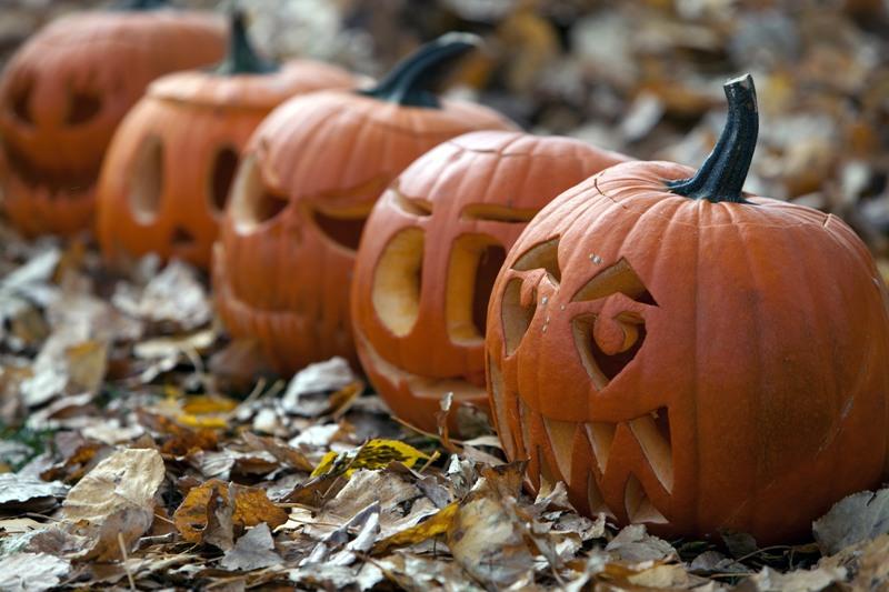 Halloween pumpkin fall