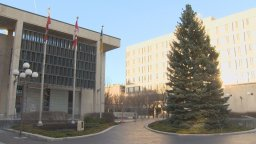 Continue reading: City of Winnipeg looking for its next Christmas tree