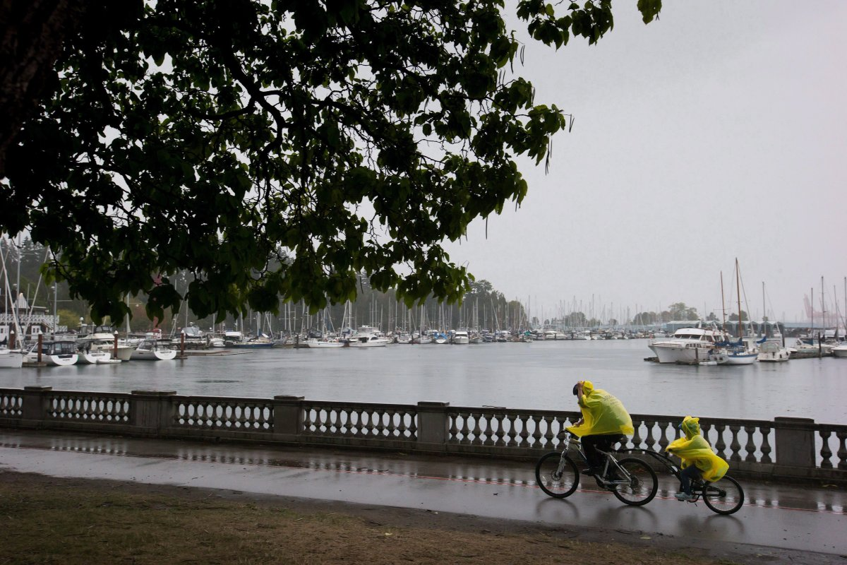 Environment Canada has issued warnings for parts of the B.C. coast, which is expecting strong winds and rain this weekend.