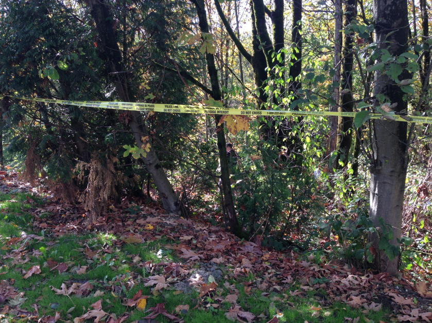 A body was found in a ravine in Burnaby.