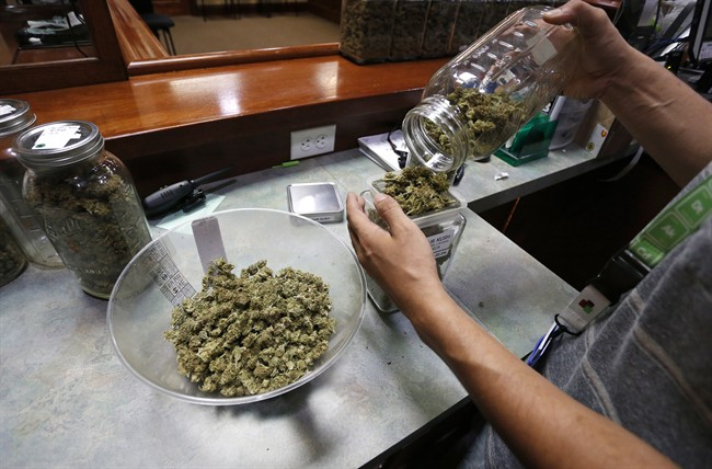 An employee places marijuana for sale into glass containers at The Station, a retail and medical cannabis dispensary, in Boulder, Colo., Thursday, Aug. 11, 2016.