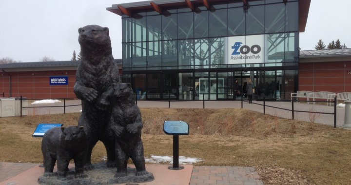 Winnipeg's zoo given go-ahead to reopen by province