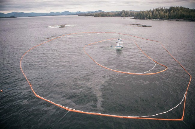 The federal government's $1.5 billion Oceans Protection Plan is of keen interest in B.C., where spill response to disasters like the sinking of the Nathan E Stewart has been widely criticized.