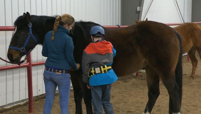 Lethbridge Therapeutic Riding Association needs more horses.