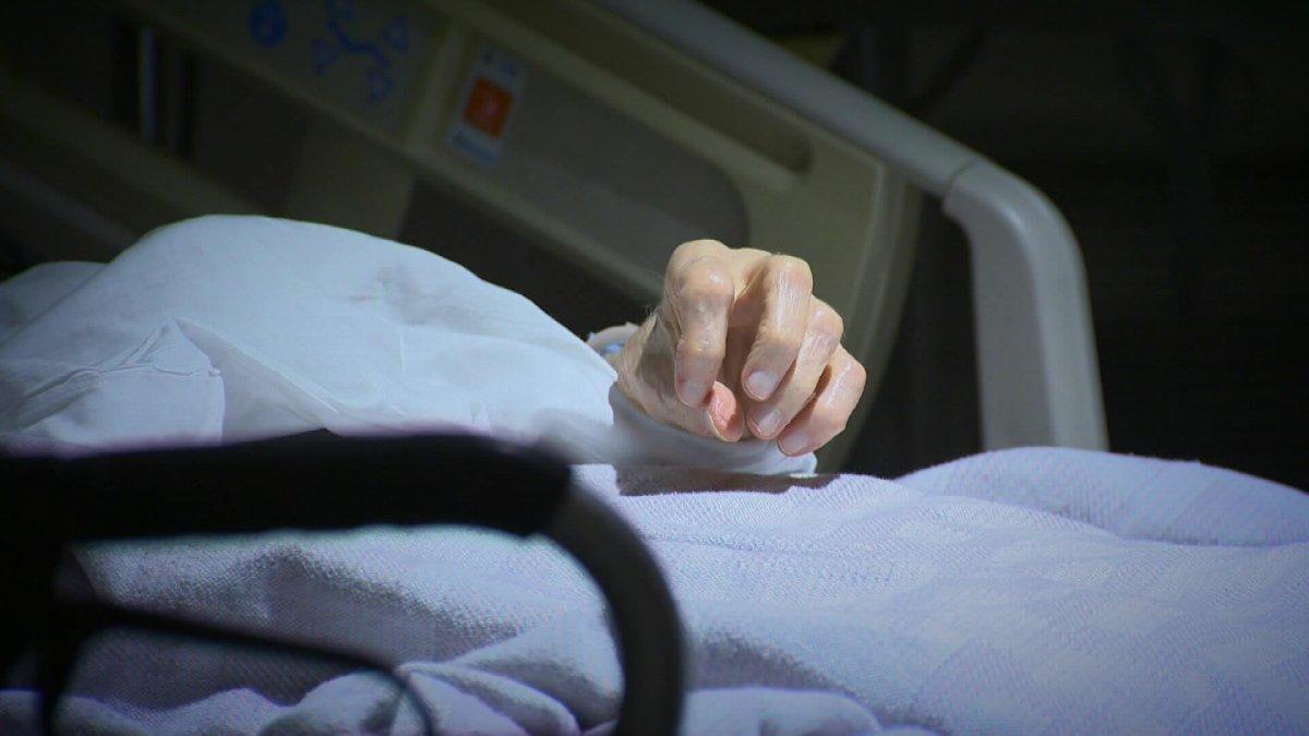 New Brunswick legislation on medically assisted dying