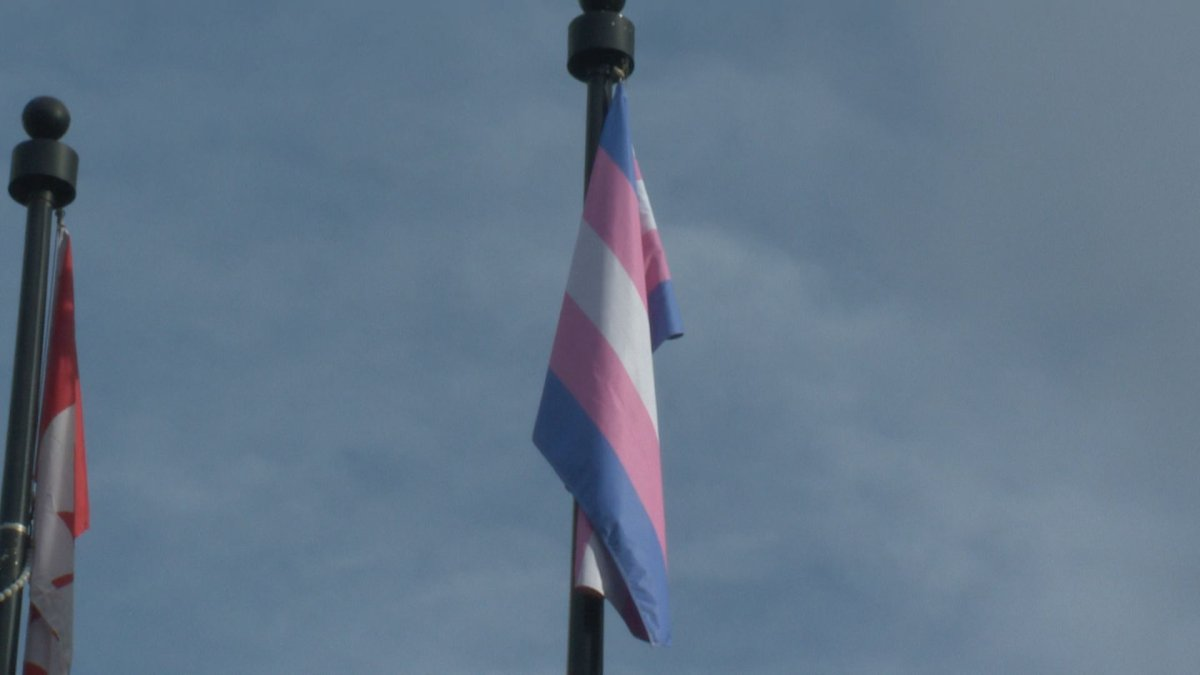 The trans flag was raised at provincial buildings around Alberta Sunday.