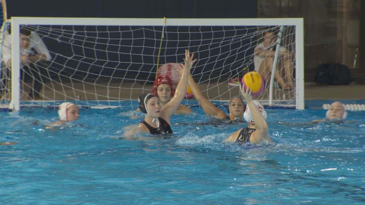 A new university women's water polo league in Quebec is looking to expand the sport within Canada, Tuesday, November 14, 2016.