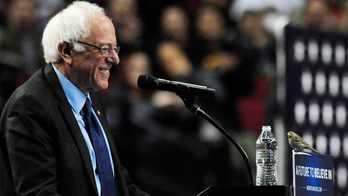 Democratic presidential candidate Bernie Sanders smiles as a bird lands on his podium when he addresses the crowd during a rally at the Moda Center in Portland, Ore., Friday, March 25, 2016. (AP Photo/Steve Dykes).