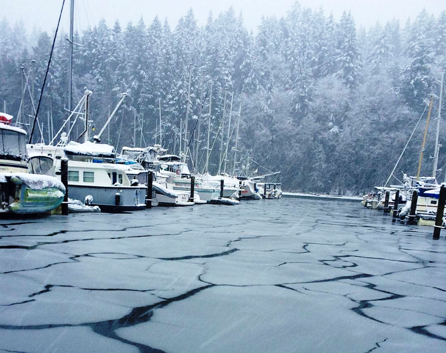 Snug Cove on Bowen Island covered in snow on Monday, Dec. 5, 2016.