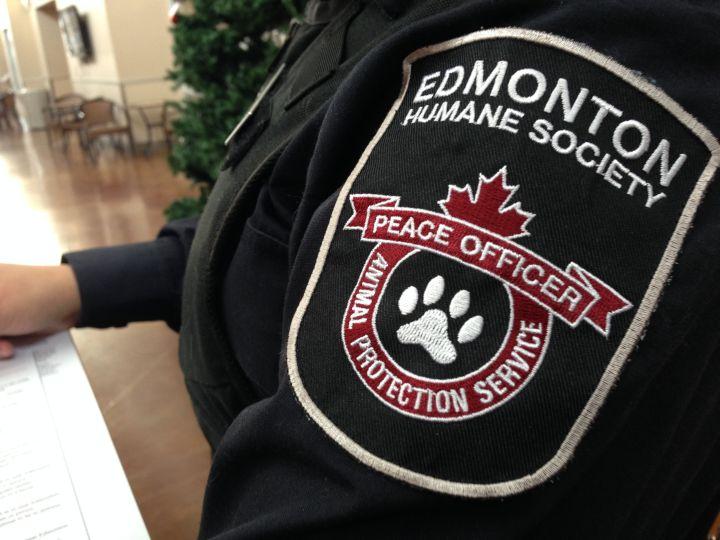 Edmonton Humane Society animal control officer.