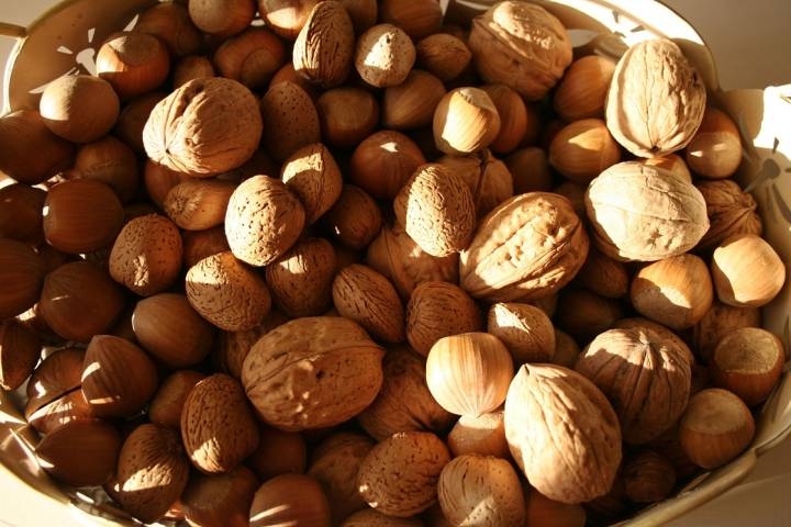 Across the board, people who eat nuts on a daily basis tend to have better health outcomes, according to a new study.