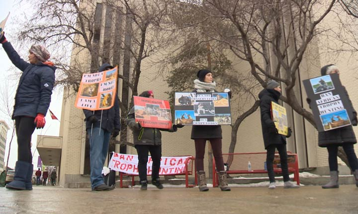 A protest of an African trophy hunting trade show in downtown Saskatoon caused a stir on Saturday.