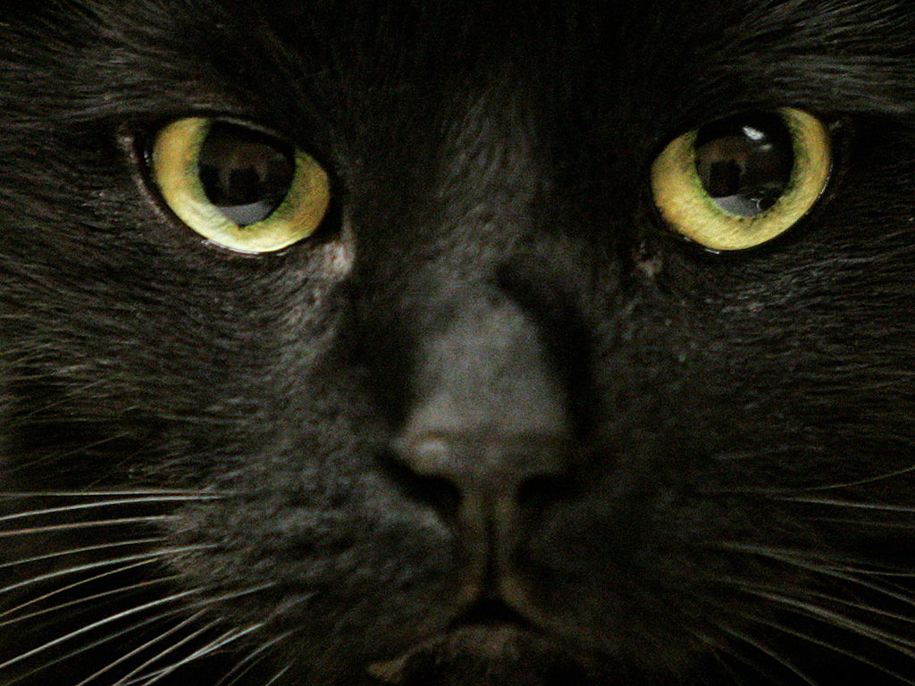 There's no need to hang on to superstitions, experts say.