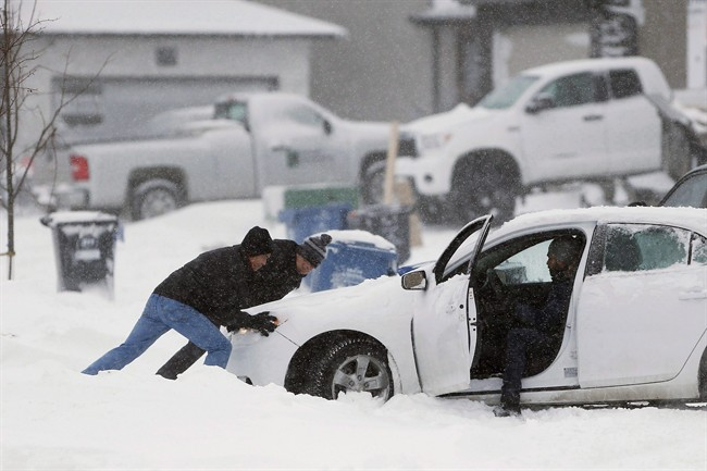 Weekend storm set to throw white blanket on southern Manitoba - image