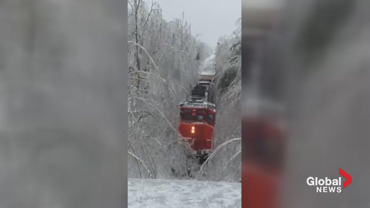 A CN Rail train slowly makes its way through ice-laden trees.