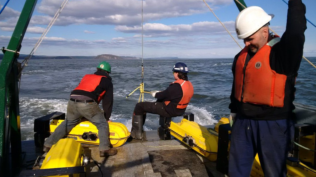 Dalhousie University's Ocean Tracking Network has been granted $11.4 million from the federal government for their ocean research operations.