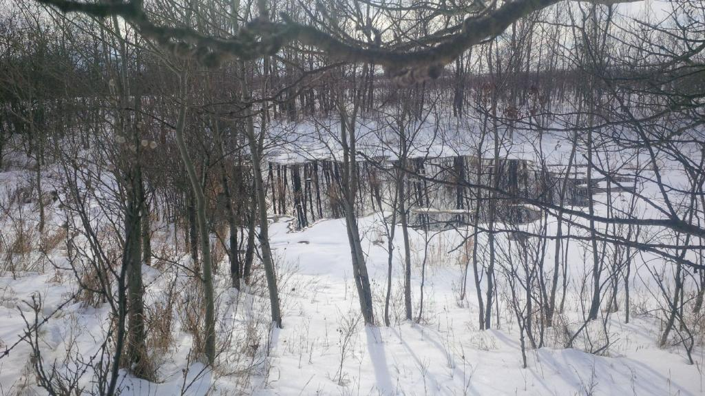 Photo taken of oil spill on Ocean Man First Nation on Jan. 20.