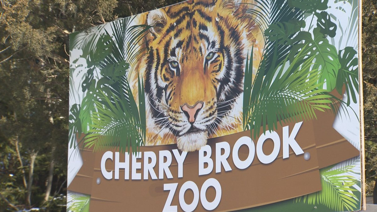 The SPCA investigated an incident at Cherry Brook Zoo in Saint John, N.B.