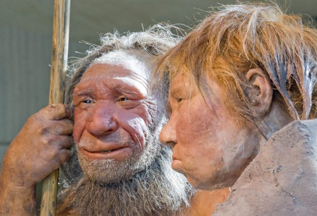 """This photo shows reconstructions of a Neanderthal man named """"N"""", left, and woman called """"Wilma"""", right, at the Neanderthal museum in Mettmann, Germany."""