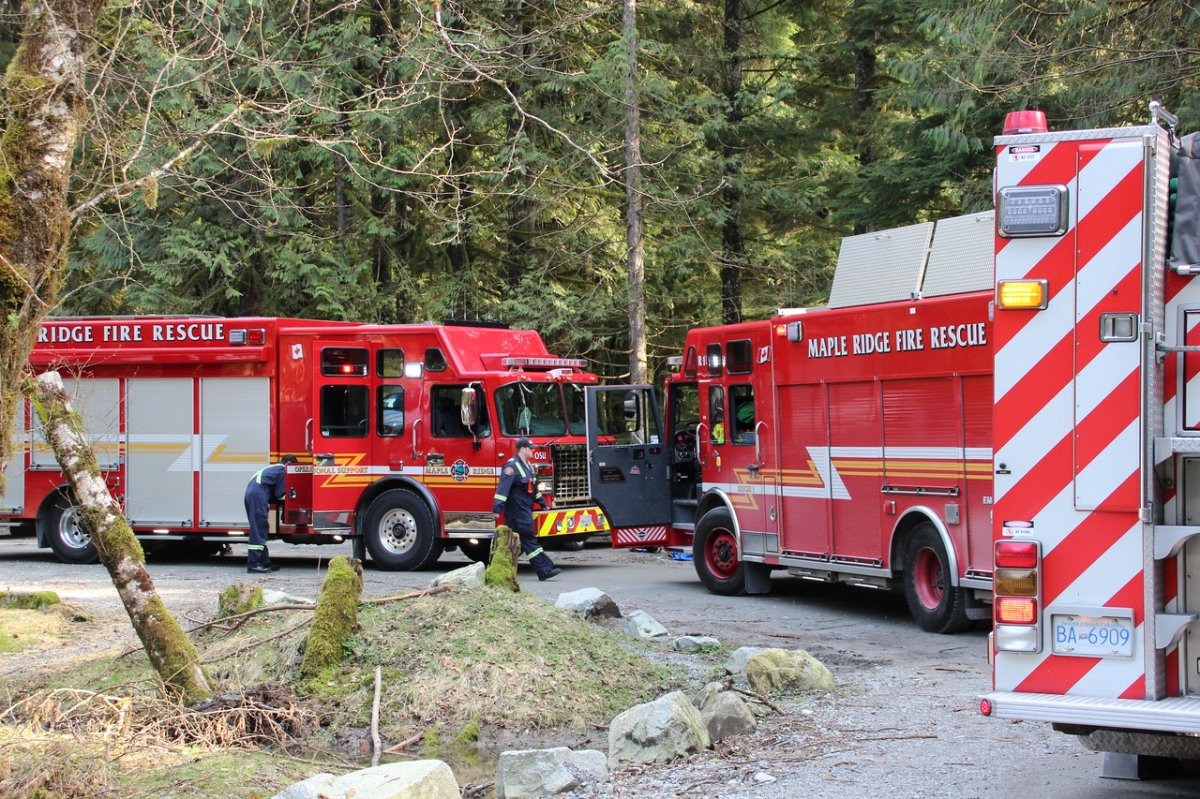 Ridge Meadows Search and Rescue crews on scene in Golden Ears Park on Sunday.