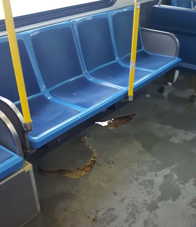 Holes located on the floor of a city bus travelling on route 20.