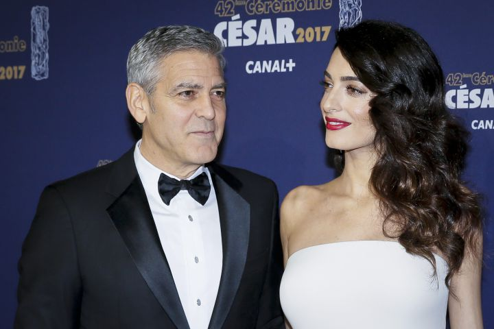 George and Amal Clooney donate $10,000 to help rescued dogs - image
