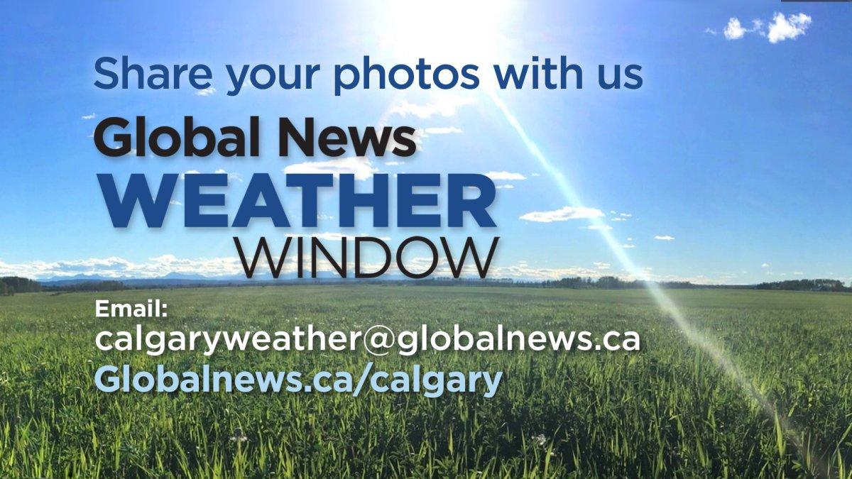 Global News Weather Window - image