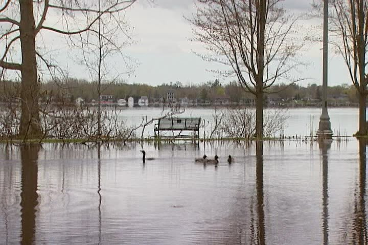 Rising lake levels at Belleville's waterfront park on May 9, 2017.