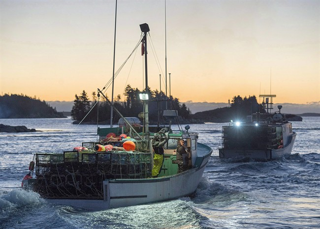 Lobster boats head from West Dover, N.S., on Tuesday, Nov. 29, 2016.