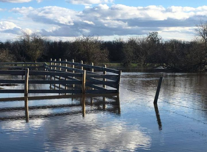 A flood warning was issued for the Whitemud River near the northern Alberta hamlet of Dixonville on Thursday afternoon.