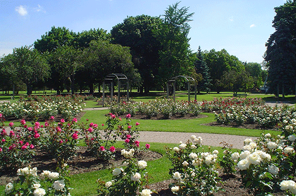 The rehabilitation of walkways at Gage Park, is among the projects to be funded through a $7.4 million federal, provincial investment in Hamilton's infrastructure.