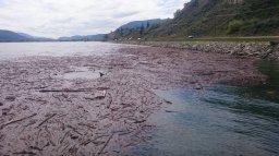 Continue reading: Okanagan-Similkameen braces for more flooding