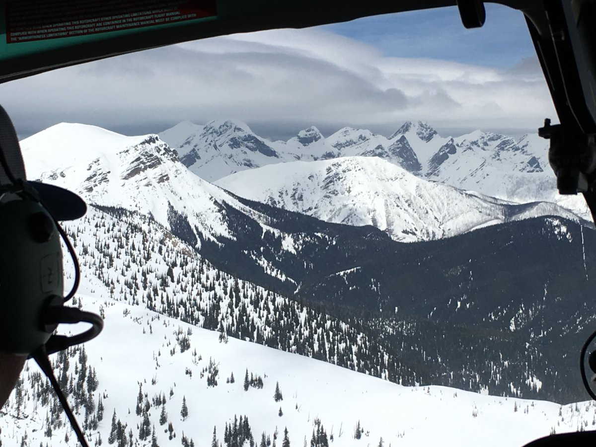 Snow covered mountains in the Crowsnest Pass.