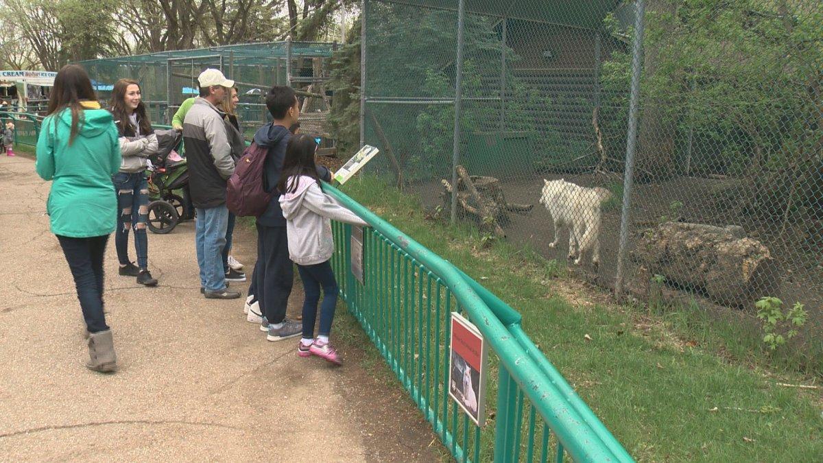 Edmonton's Valley Zoo celebrates Mother's Day.