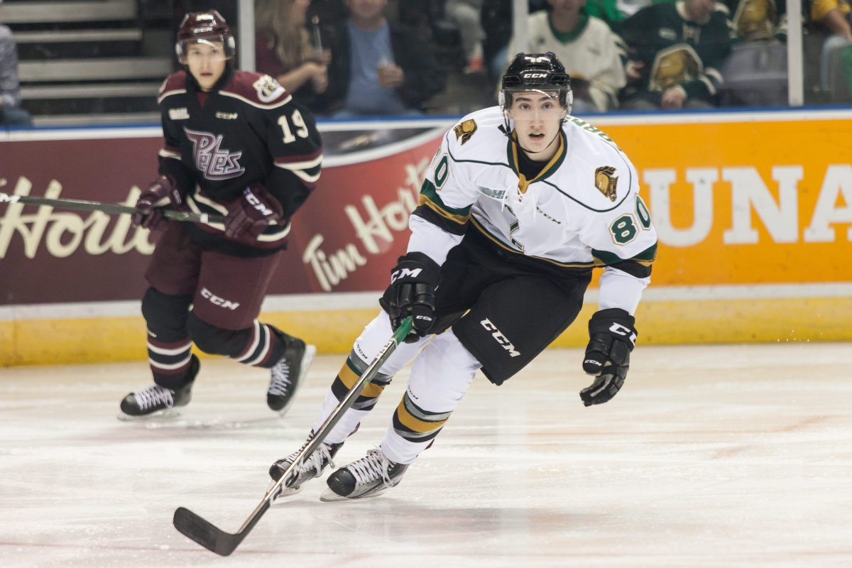 The London Knights defeat the Peterborough Petes 6-3 during an Ontario Hockey League regular season game on October 7, 2016 in London, Ont. THE CANADIAN PRESS IMAGES/Mark Spowart.