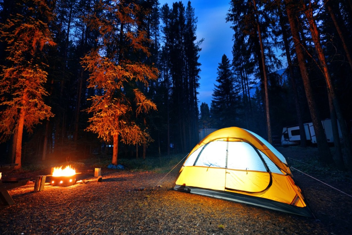 What do Canadians search for online when it comes to camping?.