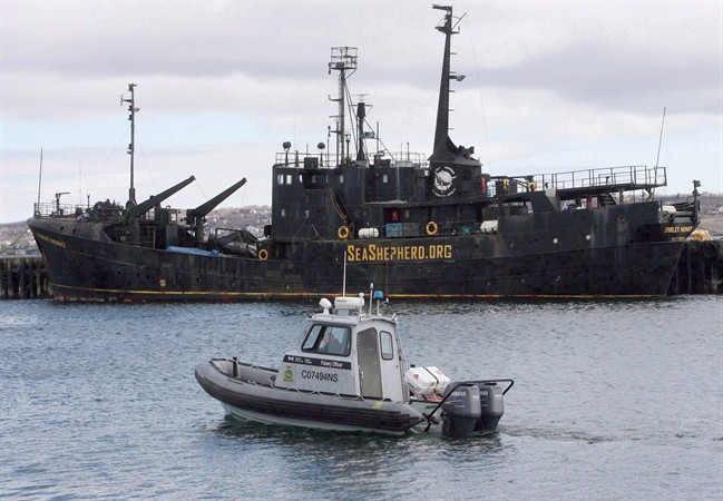 A Canadian Fisheries and Oceans patrol boat passes by the Sea Shepherd Conservation Society vessel Farley Mowat on Monday April 14, 2008, in Sydney, N.S.. The federal government is moving ahead with a plan to remove and dispose of a derelict ship that has sullied a Nova Scotia waterfront for years.