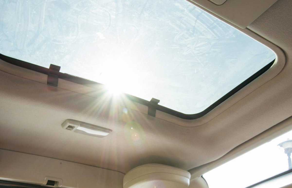 FILE: A dog sits in a car as sunlight streams in from a sunroof.