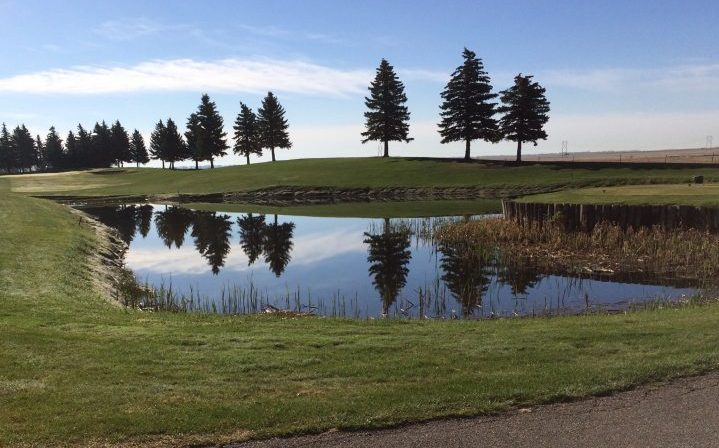 Golfers in Regina can dust off their clubs as the city's four low-cost golf courses are opening up over the next few weeks beginning Friday.