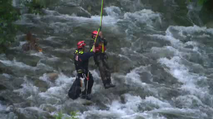 Firefighters conduct dramatic high rope rescue over Capilano River - image
