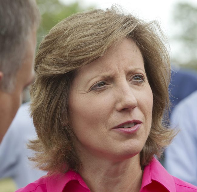 Republican Rep. Vicky Hartzler said she wanted to ensure the military's budget is spent on threats facing the country.