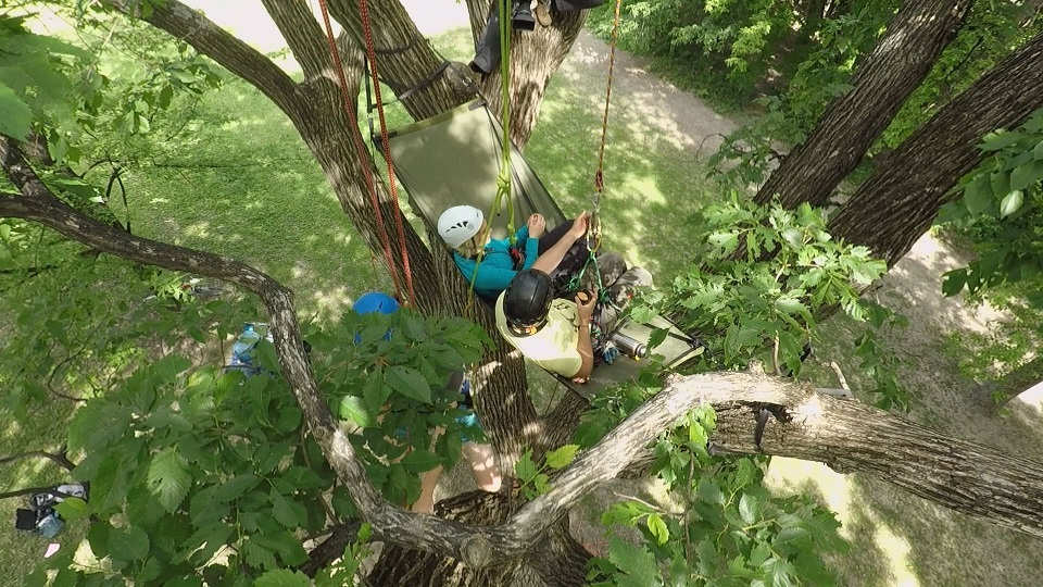 Global's Shannon Cuciz interviews tree climbing facilitator Winnipeggers another way to get out of the house.