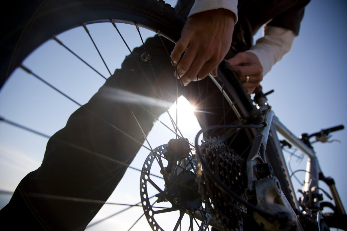Close up of a man hands checking the wheel of a bicycle.