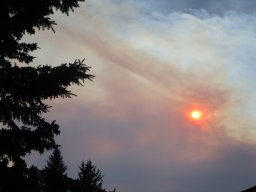 Continue reading: Heat warning and a special air quality statement for Calgary