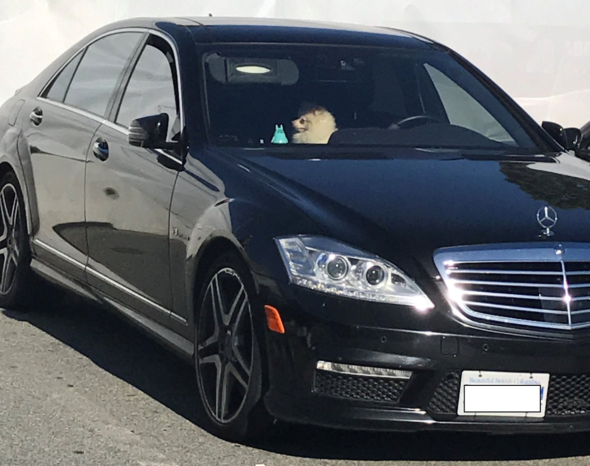 A Mercedes in the parking lot at Safeway at Lougheed Mall in Burnaby, in which a dog was found on a hot day, on July 28, 2017.
