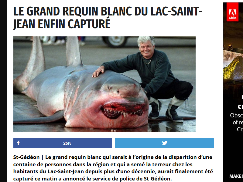 This great white shark was caught somewhere, but not in Lac-St.-Jean or Lake Michigan.