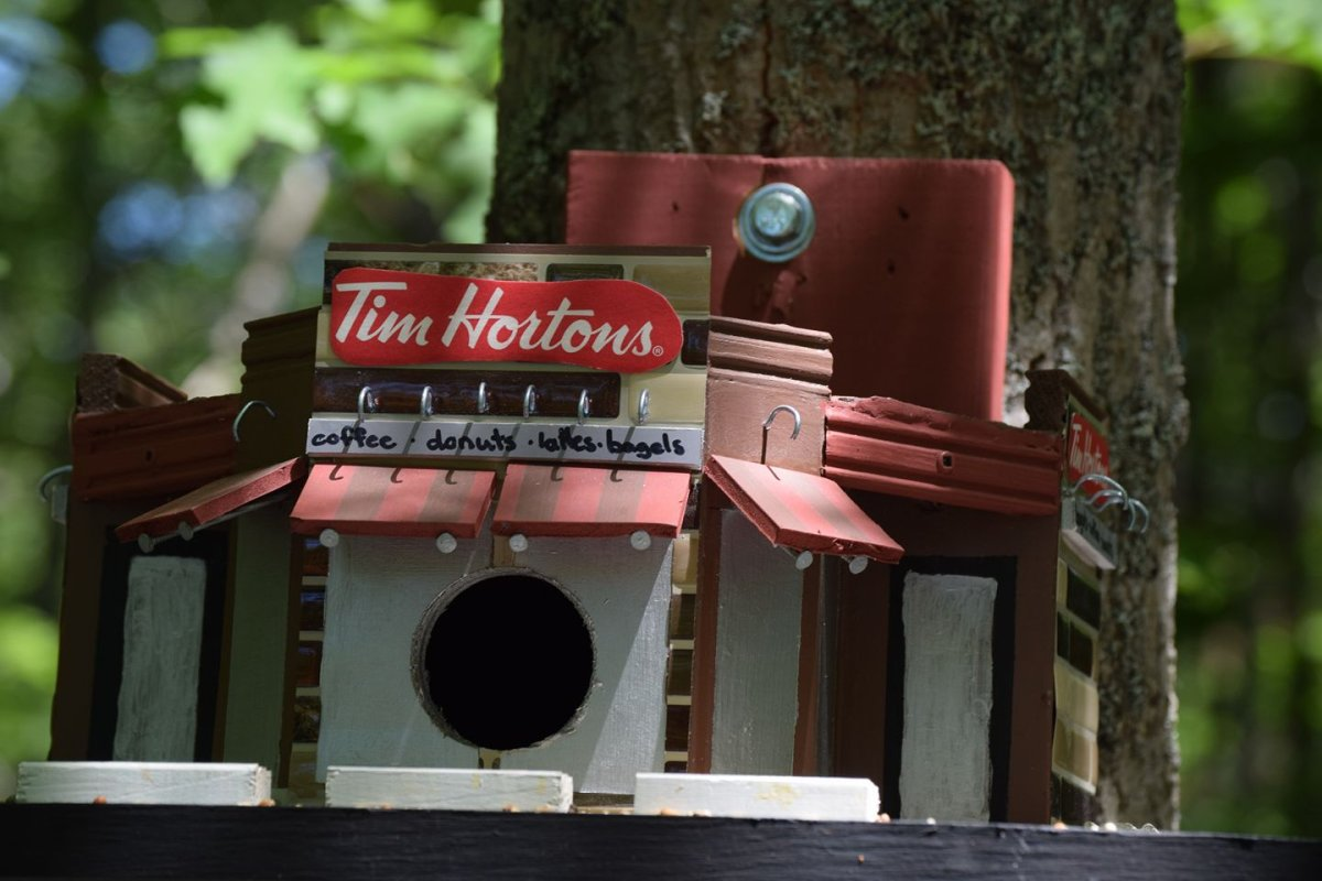 This bird house in Shubie Park has been drawing attention on social media for it's likeness to Canada's favourite coffee shop.